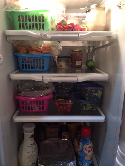 fridge pic - use